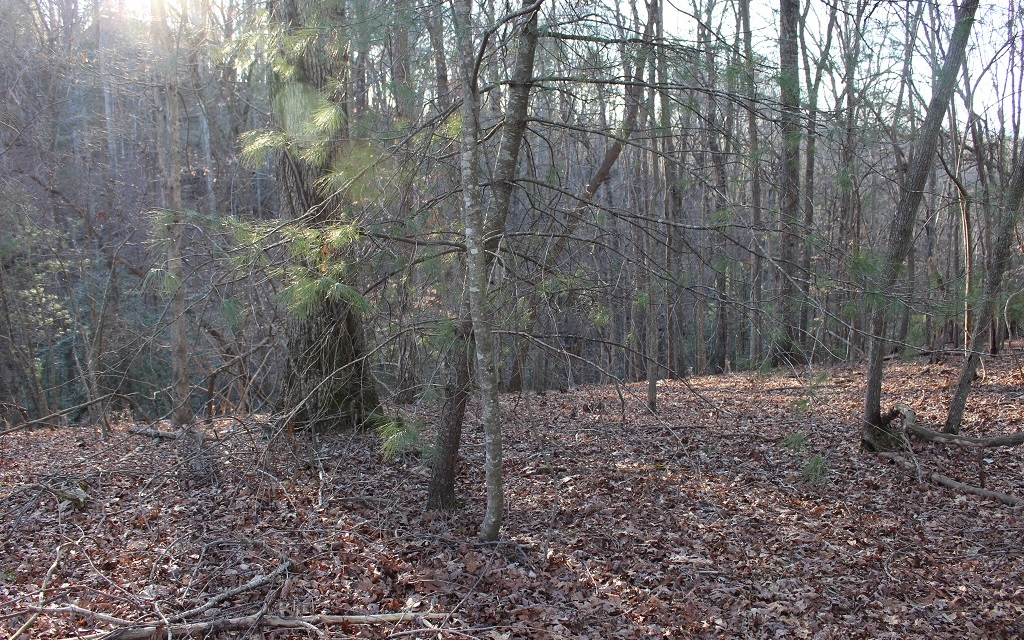 MOHAWK TRAIL-LOT 221