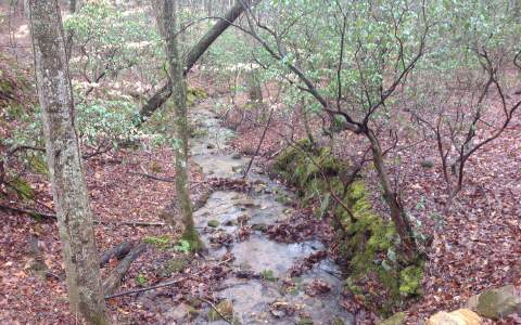 10 AC  OWL MOUNTAIN COVE, ELLIJAY, GA