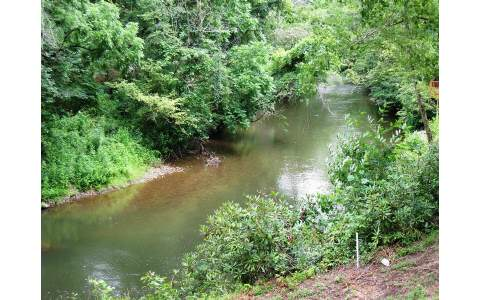 Mountain Property LOOP LANE,Marble,North Carolina 28905 ,River front For sale,River front,LOOP LANE,271070 Real Estate