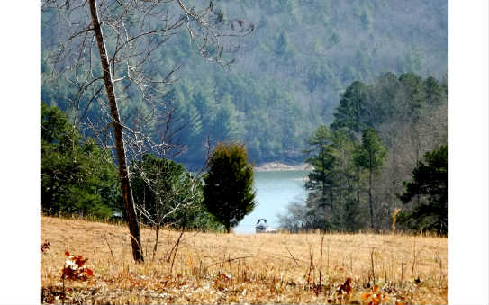 LOT19  AUTUMN HILLS, BLAIRSVILLE, GA