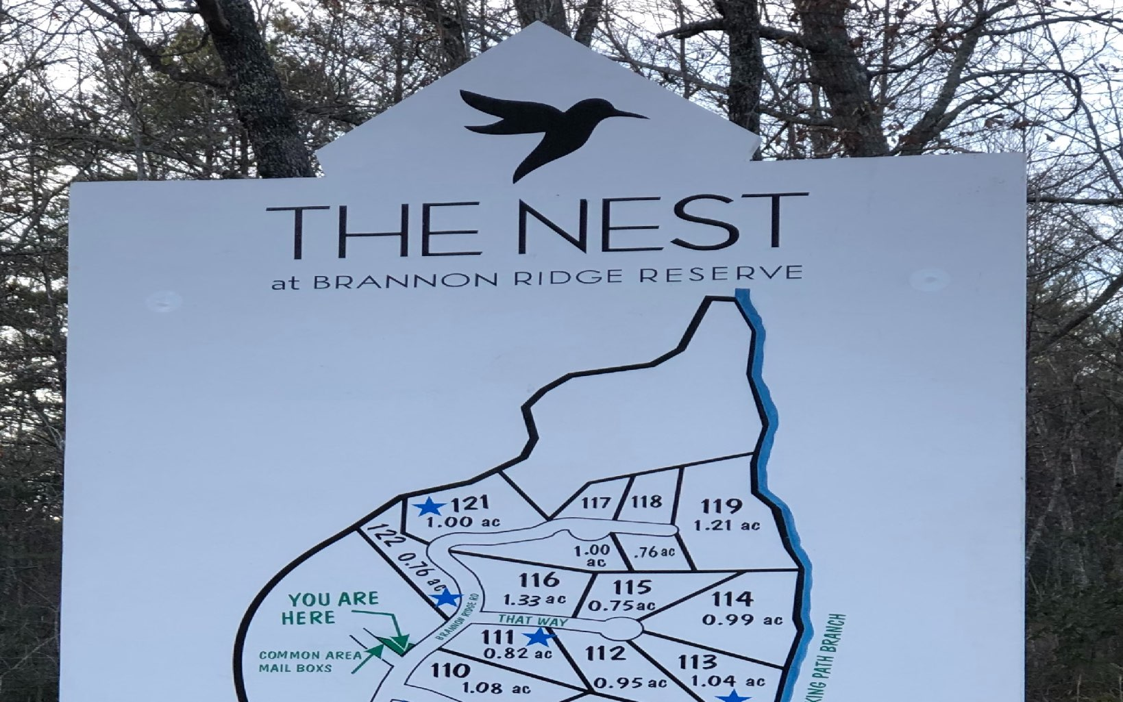 THE NEST LOT 110