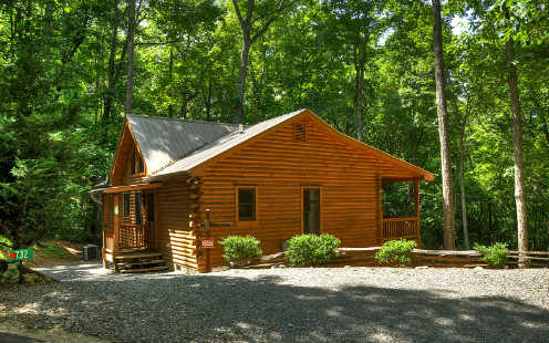 732  CHERRY LAKE DRIVE, CHERRY LOG, GA