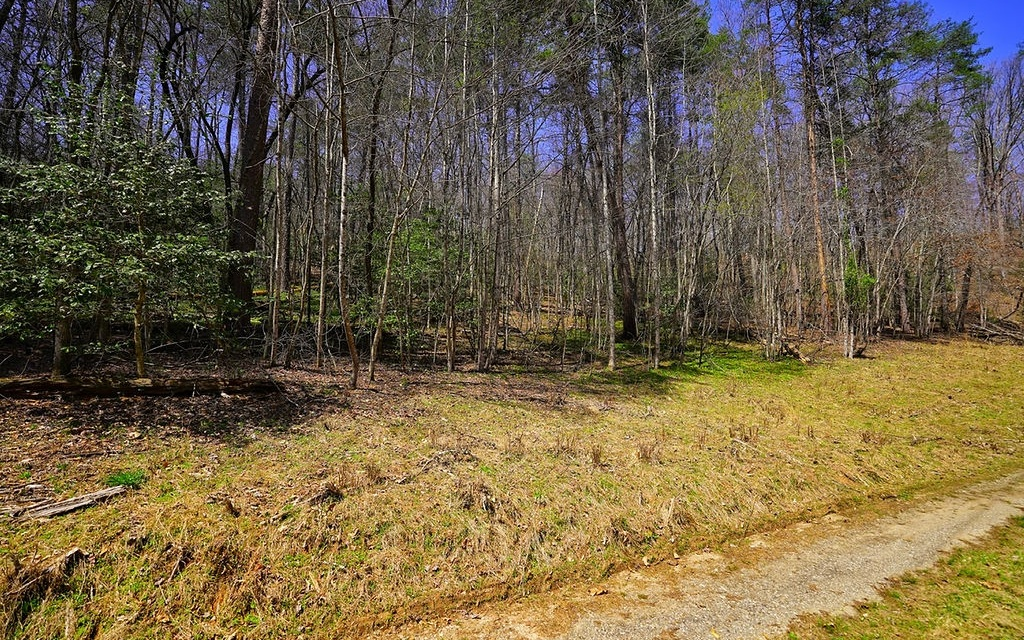 LOT 3  OLD MILL POND RD
