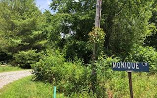 MONIQUE LANE LOT 105