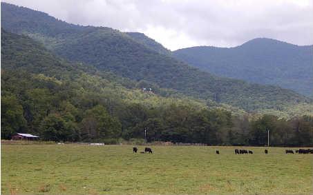 375  MOUNTAIN MEADOWS DR, HAYESVILLE, NC
