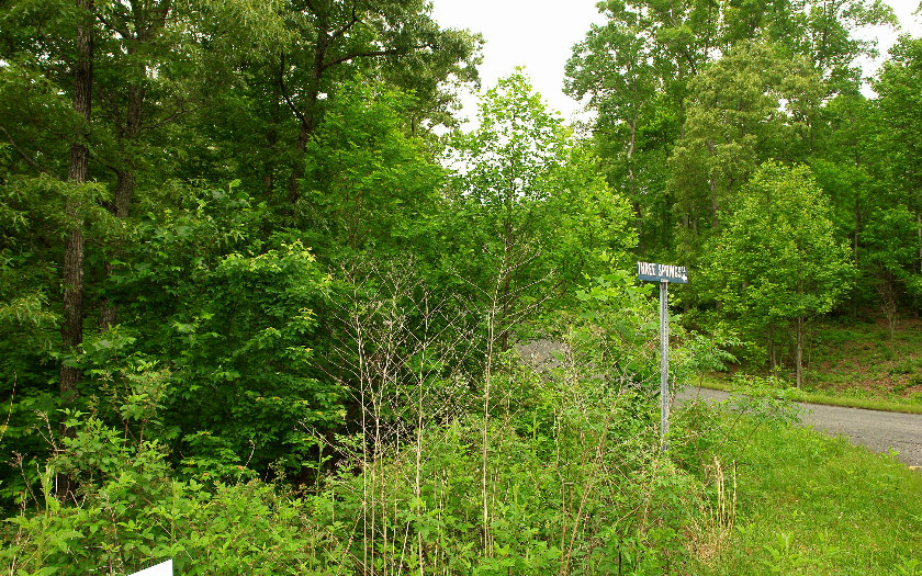 LOT44 THREE SPRINGS LOT 44,Morganton,Georgia 30560,Georgia Mountain Vacant lot,Vacant lot,North Georgia Real Estate,258077Gary Ward