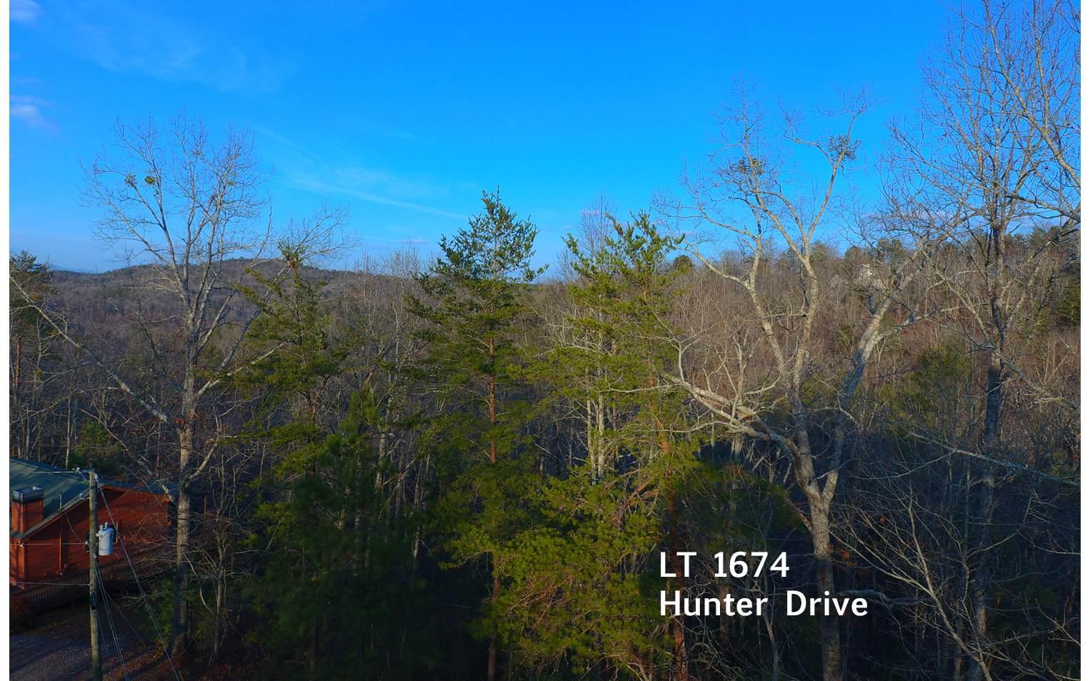 1674  HUNTER DRIVE