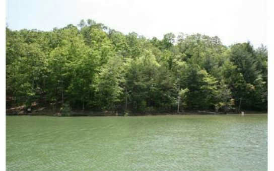 10 THE HOME PLACE, Blairsville, GA 30512