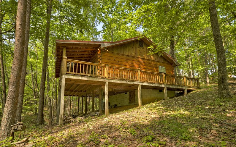 1350 CHERRY LAKE DRIVE, Cherry Log, GA 30522