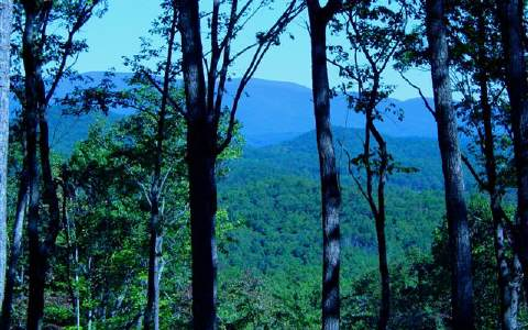 30  OLD BURNT MOUNTAIN, ELLIJAY, GA