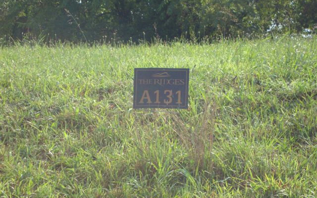 131A  MOUNTAIN HARBOUR LOT
