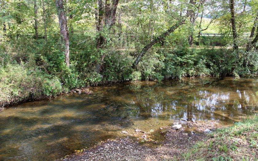 NC Mountain Home ,315 FERN LANE,Warne,North Carolina 28909,view,cabins,mountain homes for sale