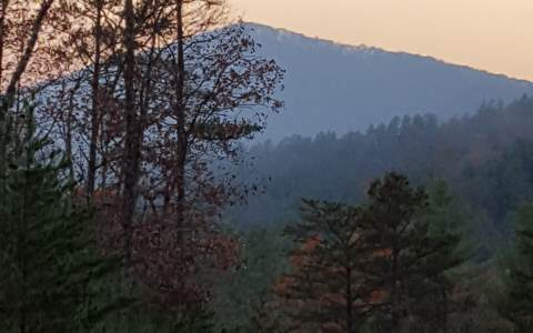 Georgia Mountain land for sale LOT 4 CABIN FEVER RETREAT,Suches,Georgia 30572,Vacant lot,CABIN FEVER RETREAT,264081,land for sale Advantage Chatuge Realty