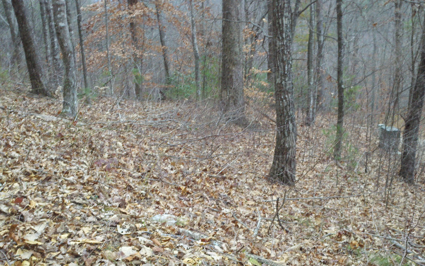 LOT10 EMERALD CREEK,Young Harris,Georgia 30582,Georgia Mountain Vacant lot,Vacant lot,North Georgia Real Estate,254382Gary Ward