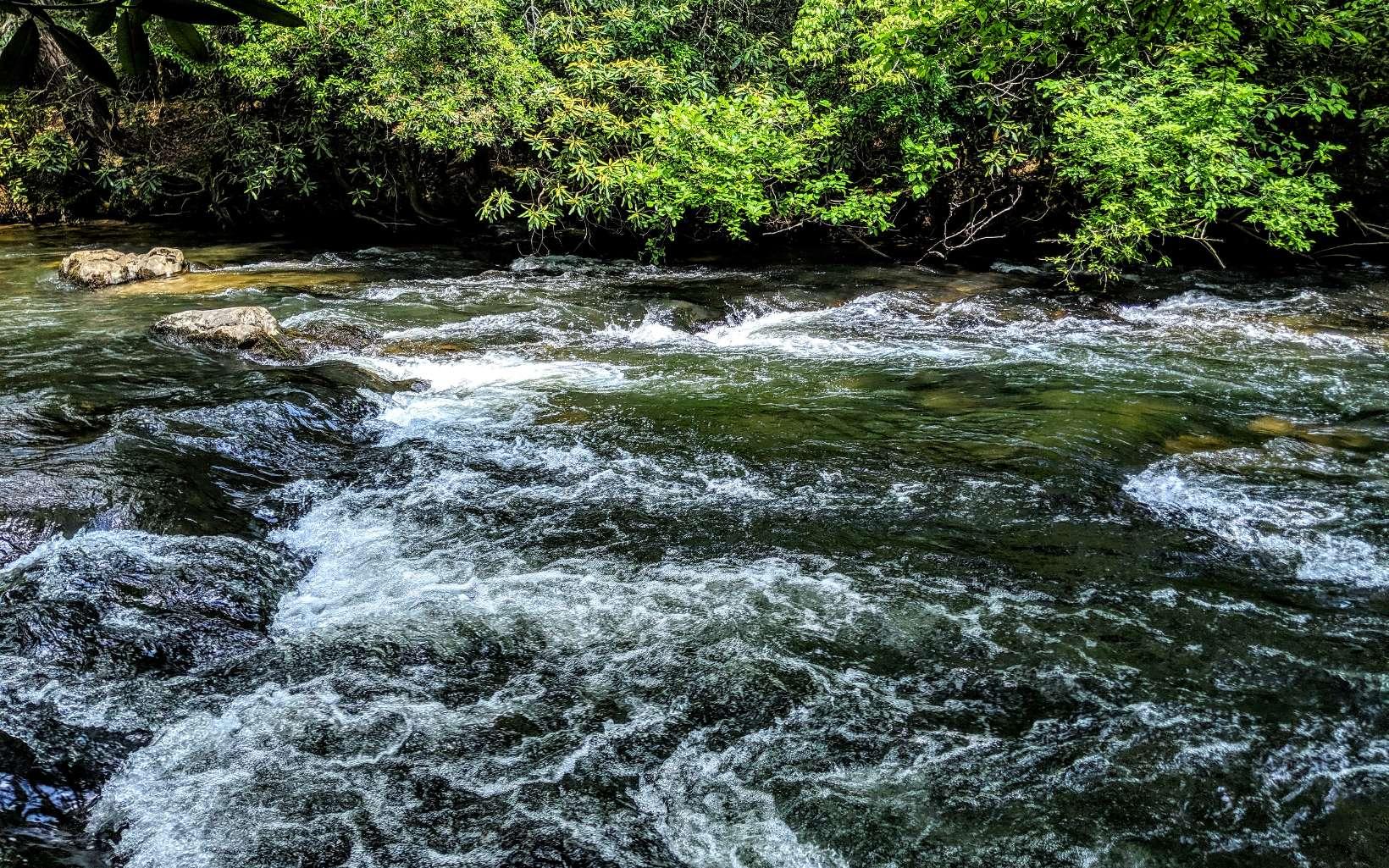 RIVER RIDGE MORELAND