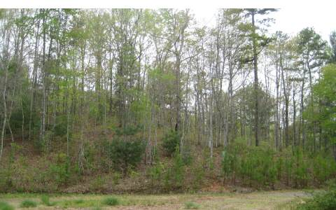 NC mountain property DONLEY ROAD,Murphy,North Carolina 28906 ,Acreage For sale,Acreage,228483 mountain real estate