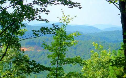 36AC  HOLLY LANE, MORGANTON, GA