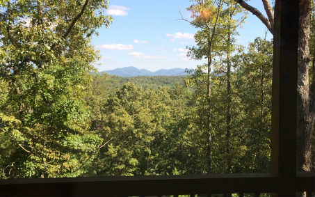 681  THE WOODS RD, MINERAL BLUFF, GA