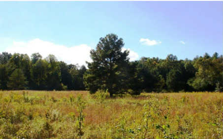 3LOTS  LAUREL COURT, ELLIJAY, GA