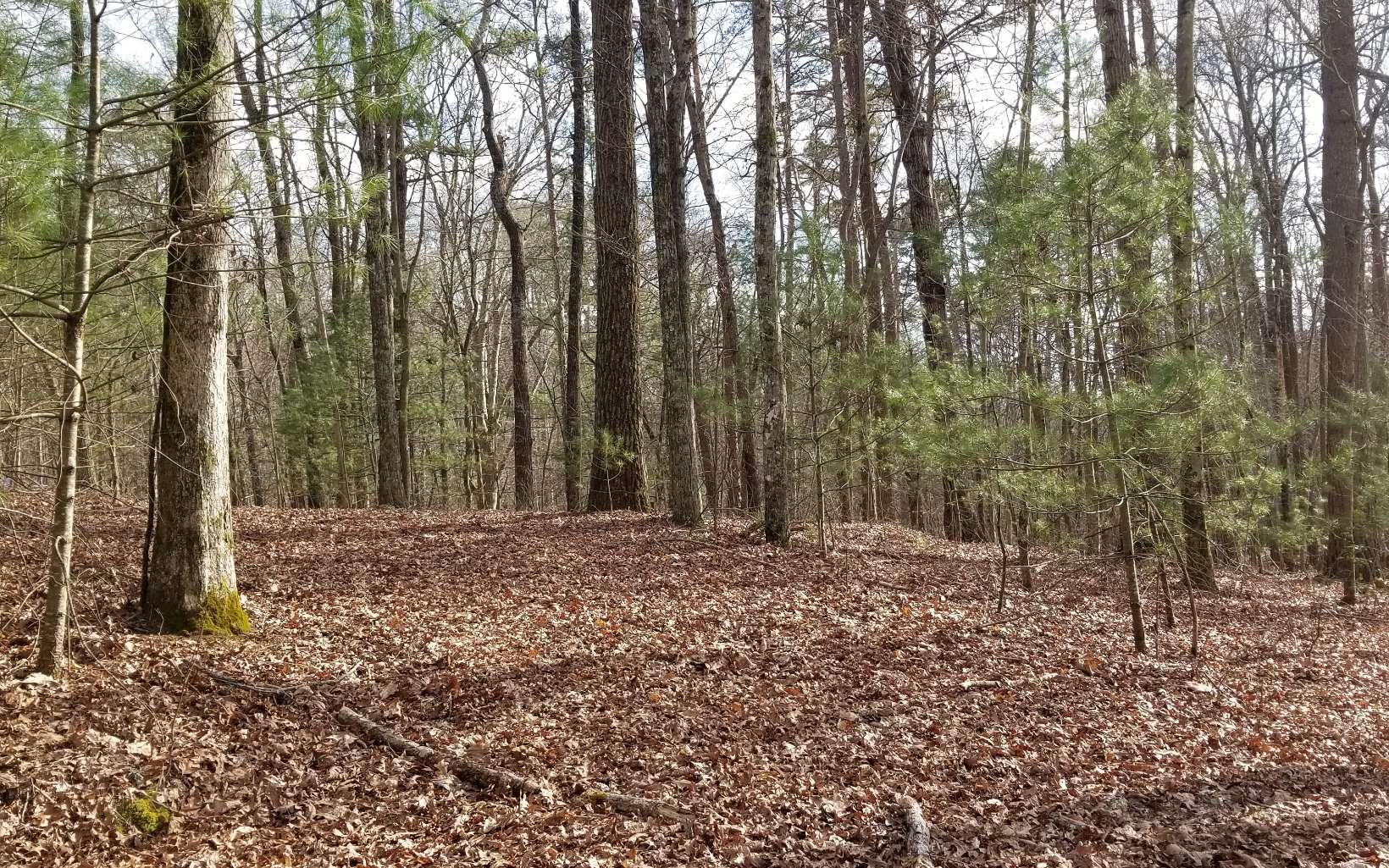 SHADE TREE LANE