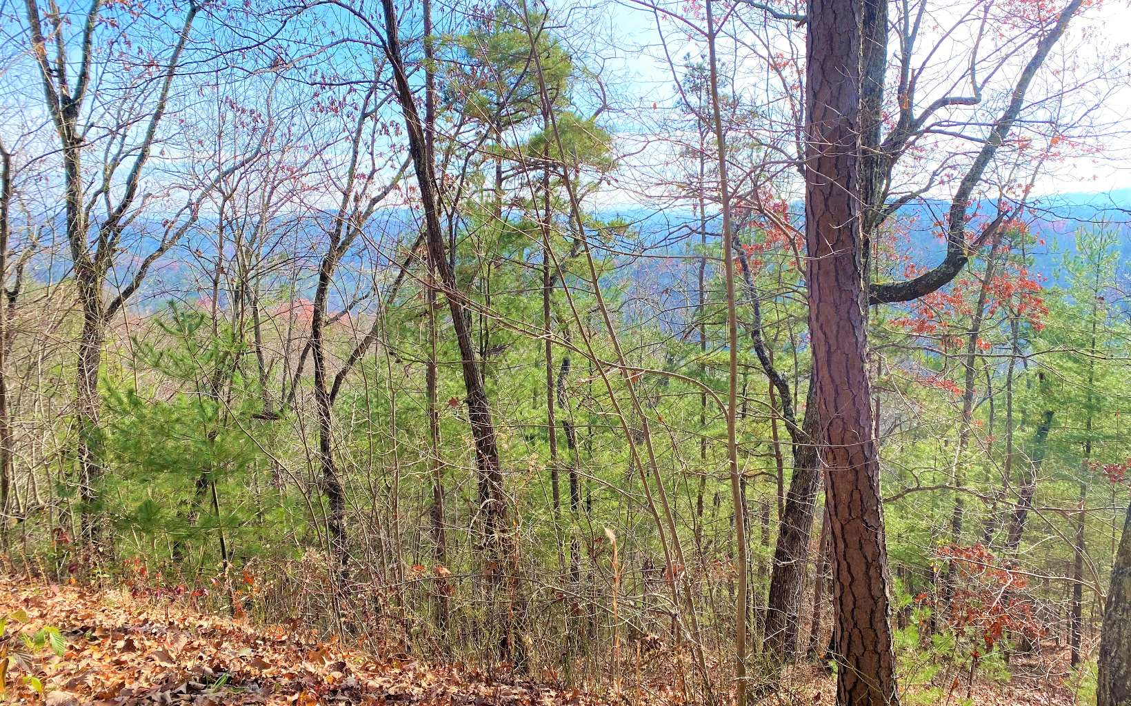 LOT38  HIGHLAND RIDGE TRAIL