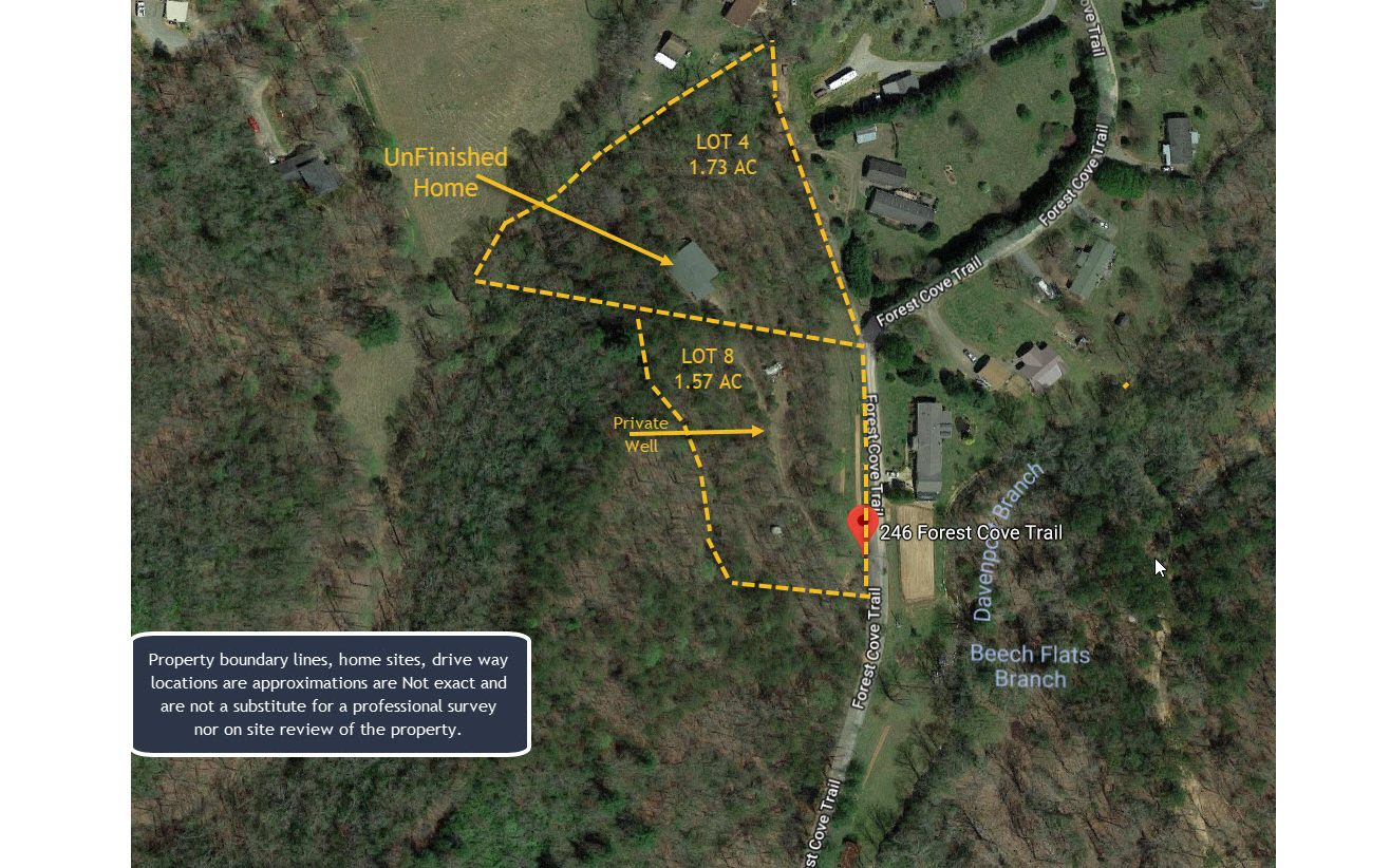 246  FOREST COVE TRAIL