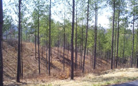 LOT27  GRAND VISTA DR.