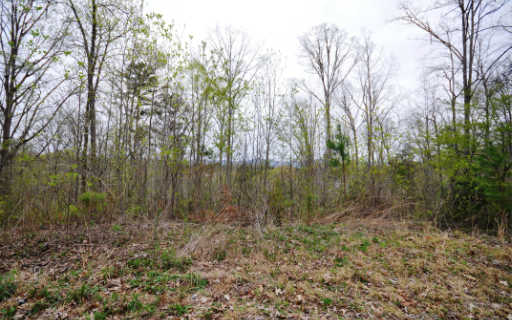 LOT25  SUGARWOOD DRIVE, MURPHY, NC