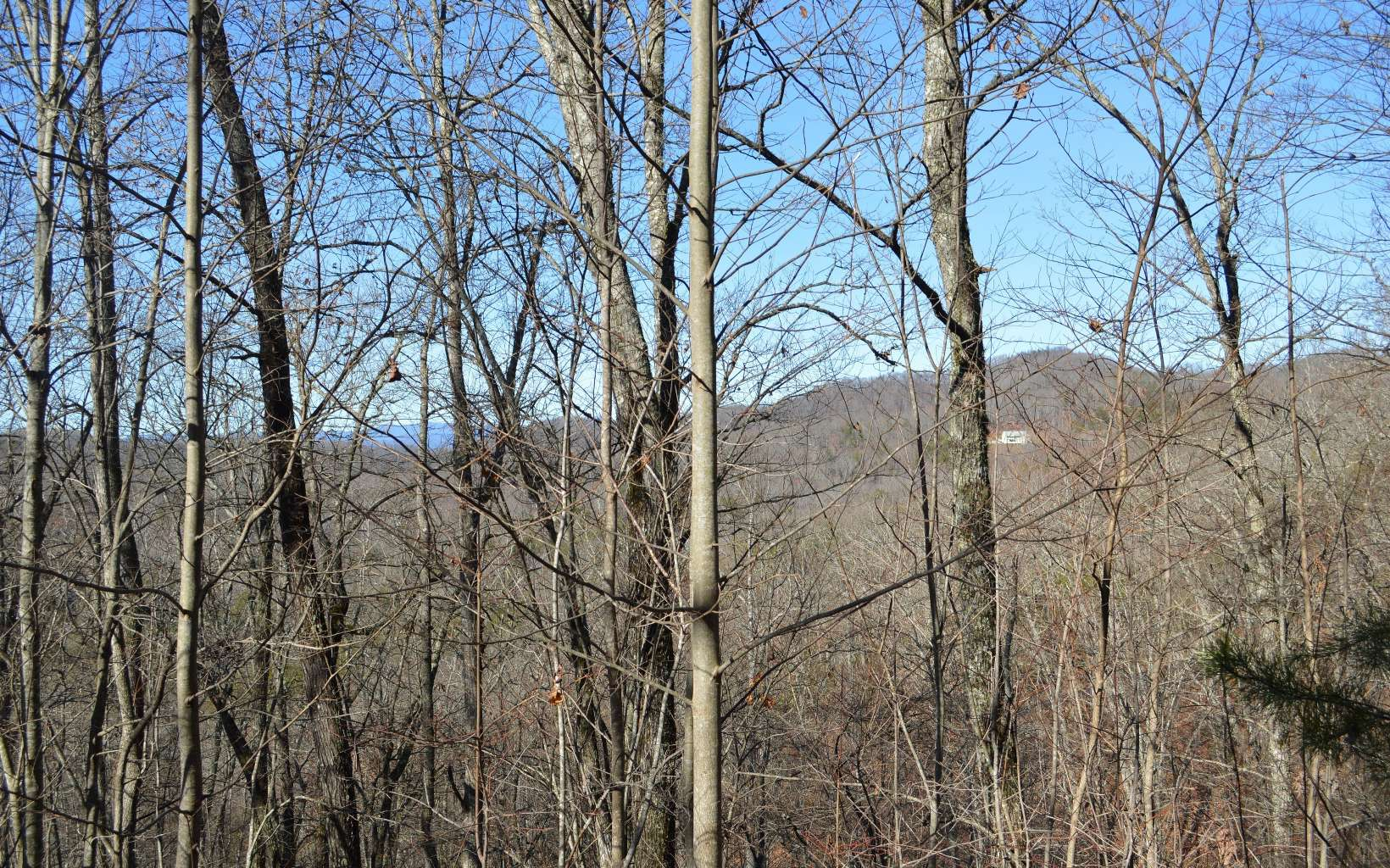 LOT21  BEACH MTN OVERLOOK