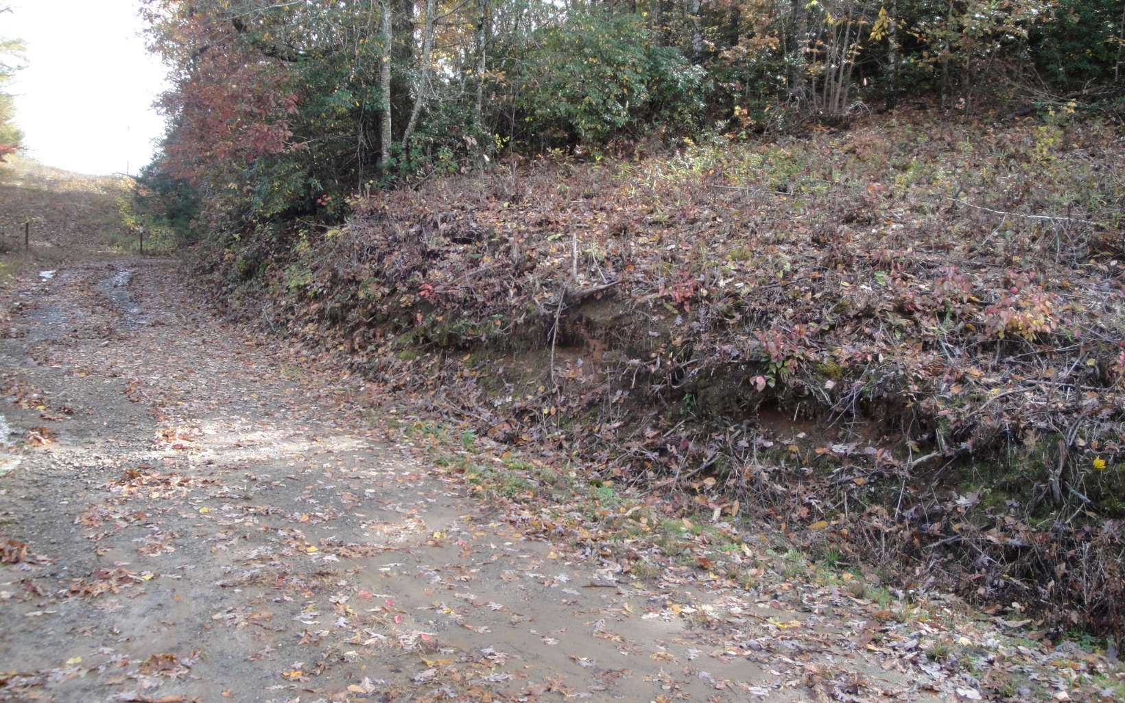 LOT4  BLUE RIDGE PARK DR