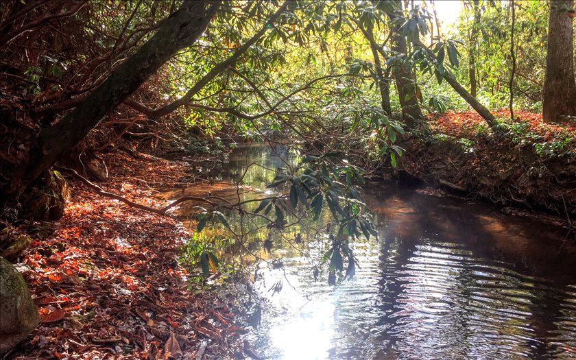 2.11A  OLD MILL POND VALLEY