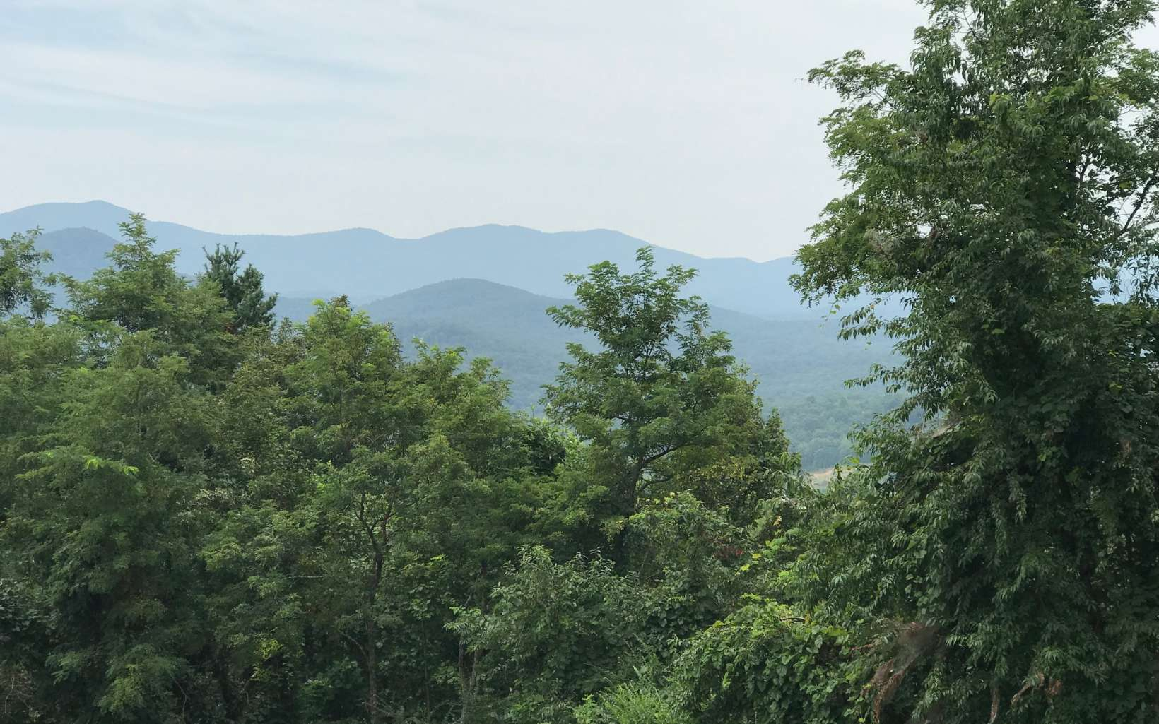 LOT75  MOUNTAIN TOP RD