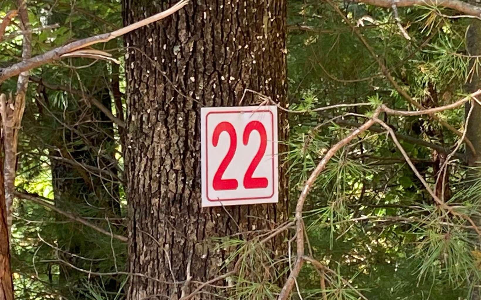 LOT22  PRINCE ROAD