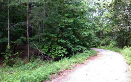 LOT 5  SHADY GROVE ROAD, TALKING ROCK, GA