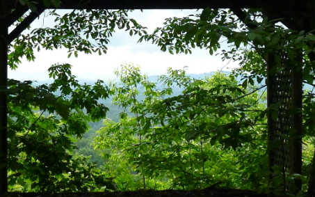 LOT 2  SHULER MOUNTAIN, MURPHY, NC