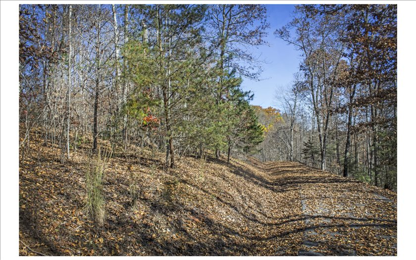 North Carolina Mountain land for sale 44 DASALI WAY,Murphy,North Carolina 28906,Vacant lot,DASALI WAY,273599,land for sale Advantage Chatuge Realty