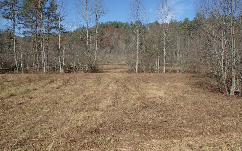 LOT 7  BUCK CREEK CROSSING